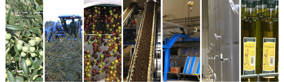 Processus : Moulin Hacienda Ortigosa
